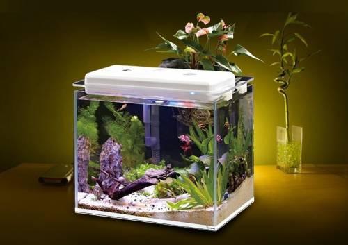 魚樂圈 智慧生態水族箱 養魚新手利器