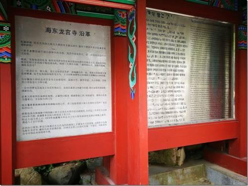 到釜山應該要去一次的海東龍宮寺