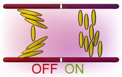 廣視角LCD反應時間慢 OCB又廣又快