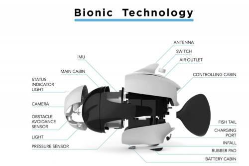 是魚還是無人機 Biki 水下無人機重現魚的視角!