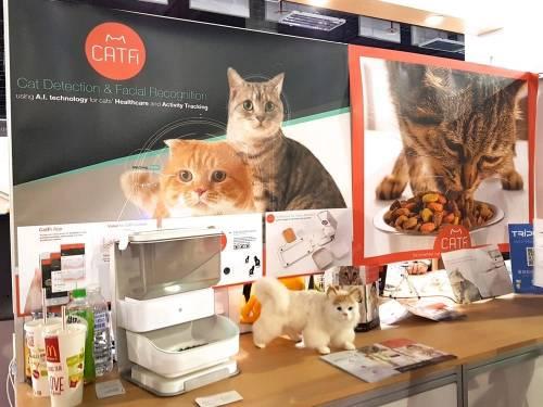 死而復生 CatFi 貓臉辨識餵食器COMPUTEX再現