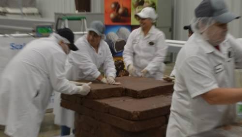 [世界之最] 世界上最大的松露巧克力