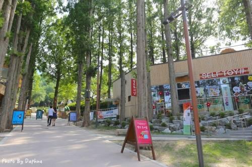 韓國大邱 香草之邱 童趣 刺激 浪漫 適合全家同遊的景點 在山區享受大邱的夏日香氣