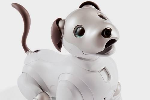 Sony 新一代智慧狗 AIBO 不只萌還加入了 AI !