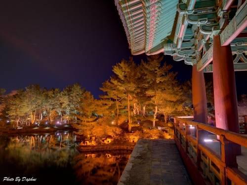 韓國慶州自由行 夜間行程推薦 雁鴨池 自由市場鳳凰市集 中央市場夜市