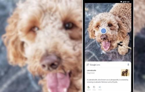 動作好快! Sony Xperia XZ2 加入 Google Lens AI 智慧相機功能!