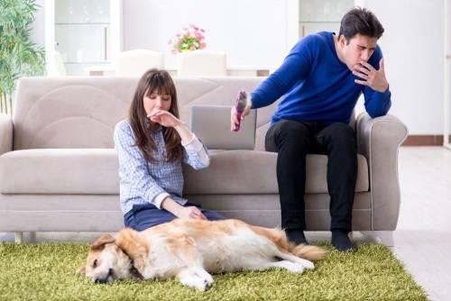 養寵物有害呼吸品質 挑對清淨機很重要