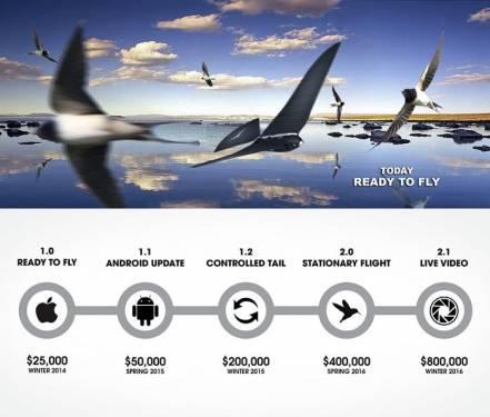 遙控飛機不夠 現在我們可以遙控機械小鳥啦!