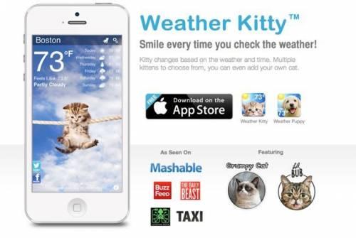 Weather Kitty 由貓咪來為你報氣象