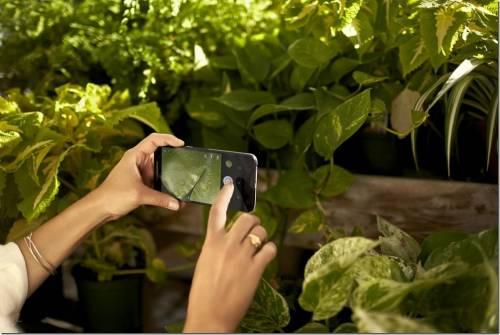 LG與Google合作 推出Nexus 5X 頂尖拍照與攝錄功能 完美影像精彩呈現
