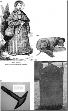 [Google Doodle] Mary Anning 英國古生物學家 215歲誕辰紀念