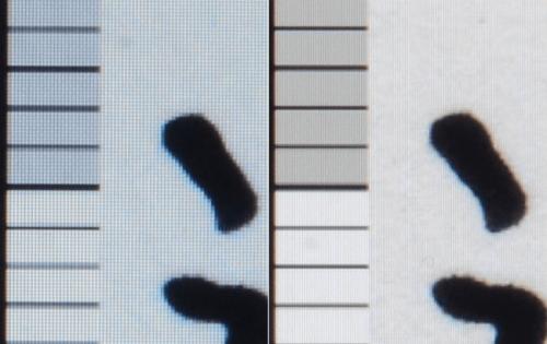 邀稿 12吋平板新區塊 逐漸發酵中