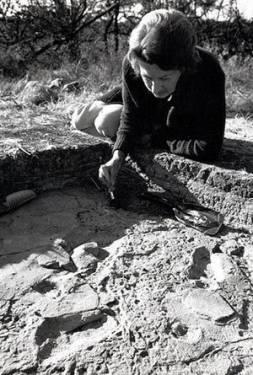 英國考古學家 人類學家 Mary Leakey 100歲誕辰