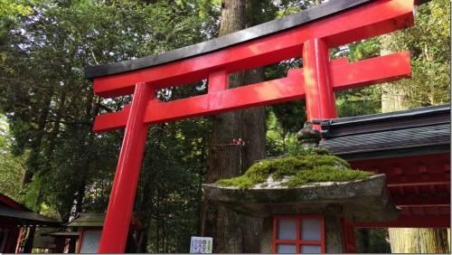 帶著 HTC Butterfly 3 去旅行 日本箱根半日遊 箱根神社