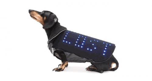 防走失的智慧狗背心 Disco Dog 為你的狗兒找到回家的路