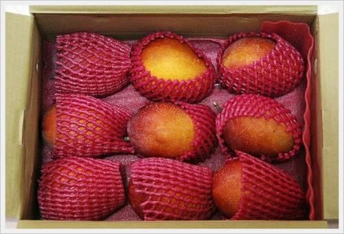 教你分辨芒果是自然熟成還是人工催熟