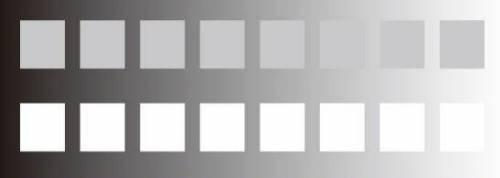 什麼是螢幕對比?很重要嗎?